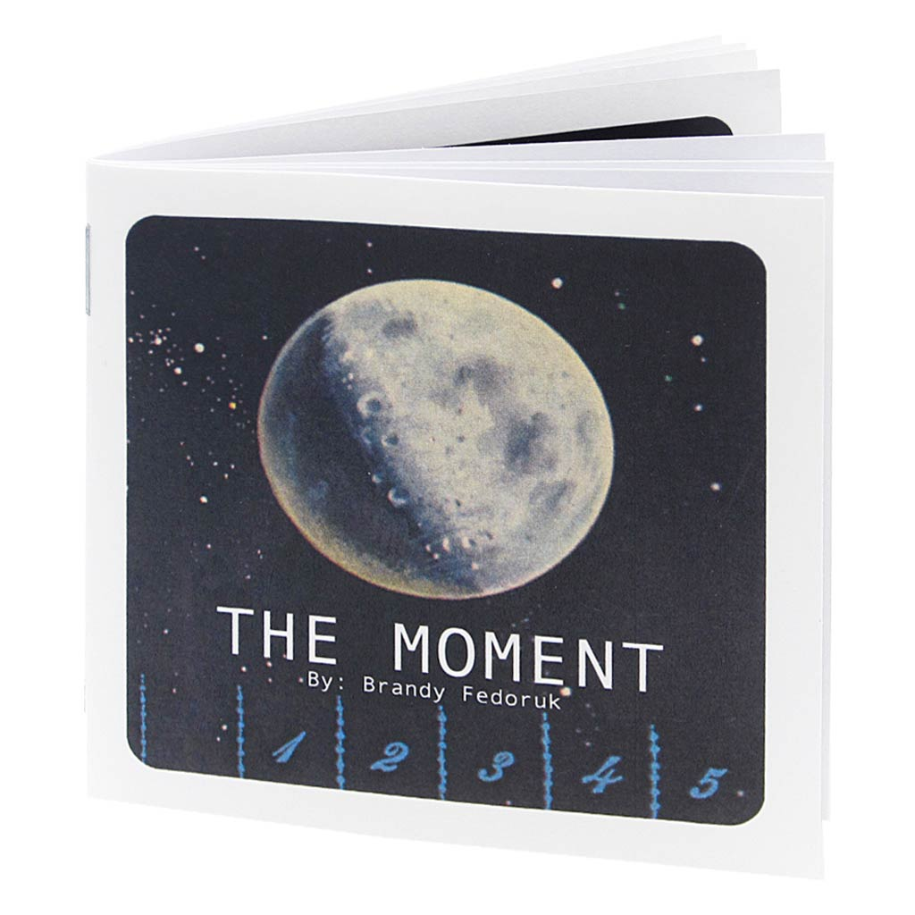 The Moment is a story about friendship, misunderstanding and regret. The Moment follows a cast of characters through time and space from the very beginning of time until the very end. Have your handkerchief at the ready because this book is a real tearjerker.