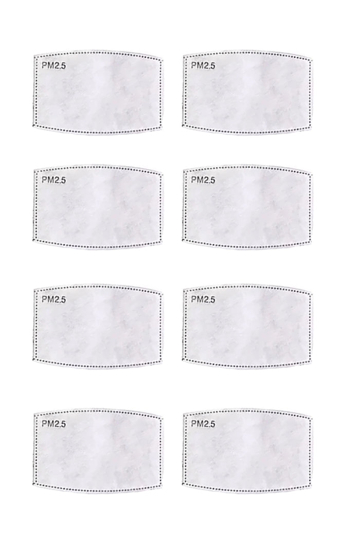 PM2.5 Mask Filters (10pk)
