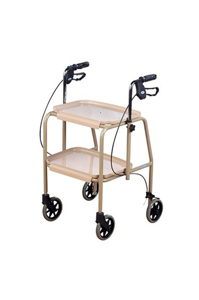 Tray Mobile with Hand Brakes (125kg)
