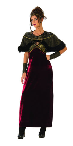 Medieval Lady Viking Costume for Women