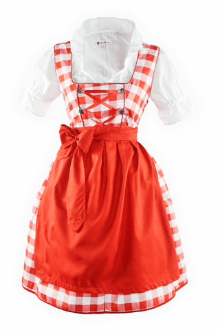 Oktoberfest Traditional German Beer Girl Costume Dirndl Romy