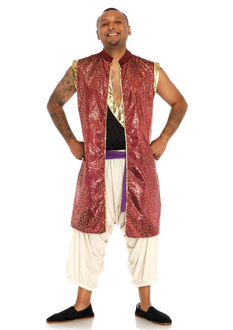Prince Al Men's Bollywood Genie Hire Costume