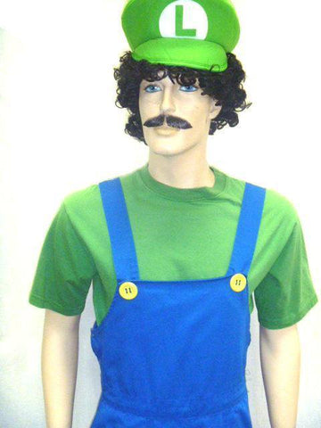 Luigi Mens Hire Costume