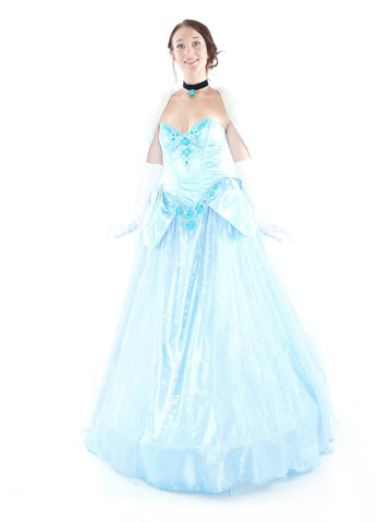 Costumes Women - Cinderella Deluxe Limited Edition Adult Princess Hire Costume