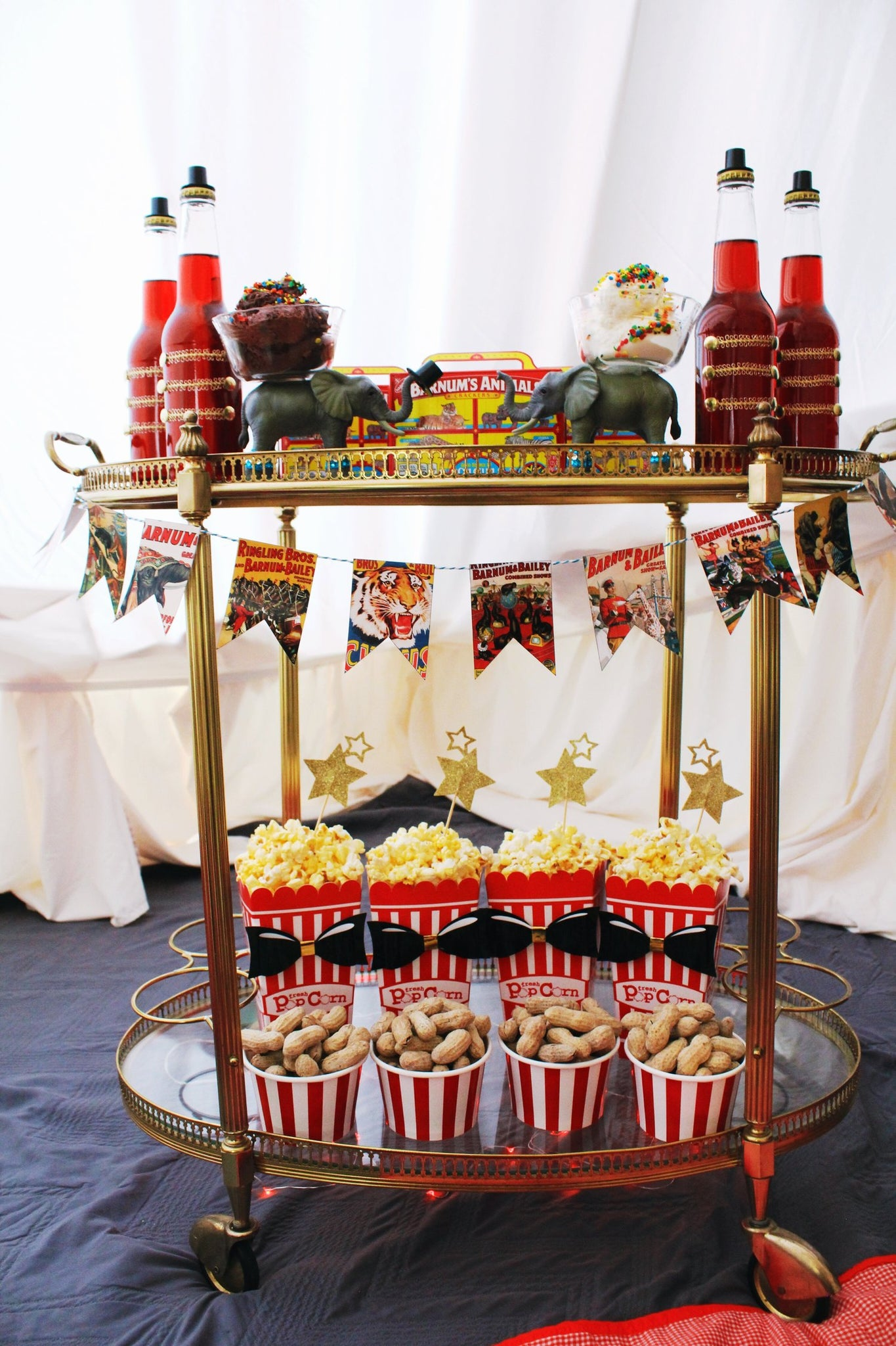 The Greatest Showman Party Ideas
