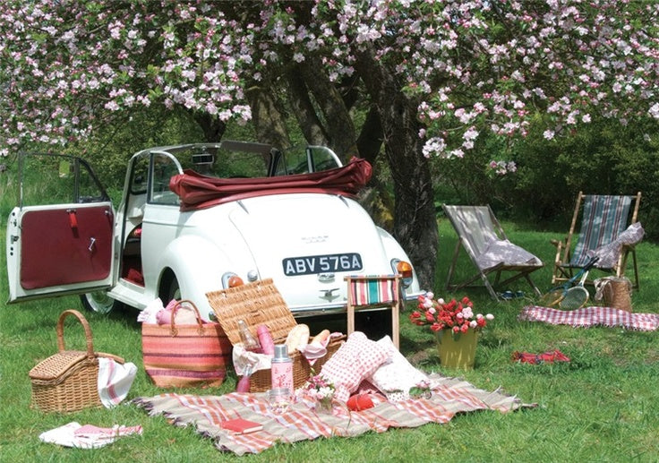 Pack the Perfect Picnic - The Prettiest Picnics Around ...