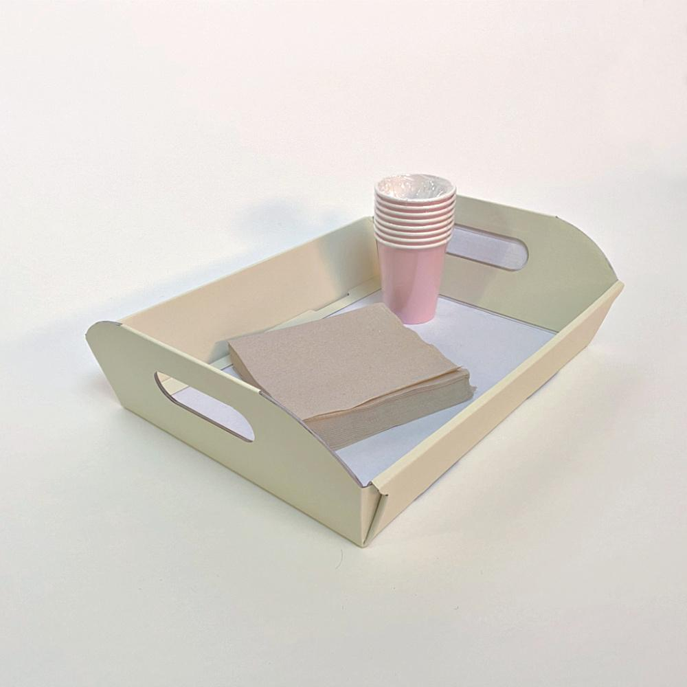 Disposable Serving Trays for Parties Events and Weddings