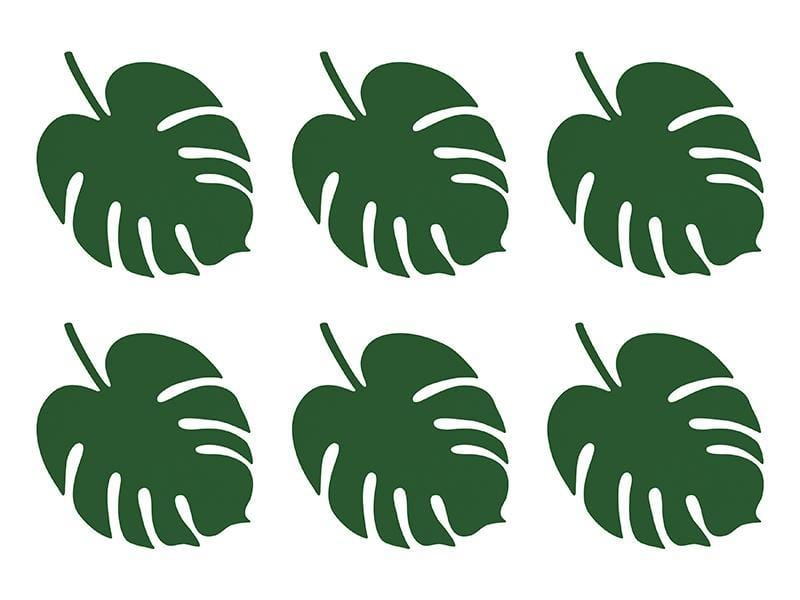 Monstera Tropical Leaves 6 Pack