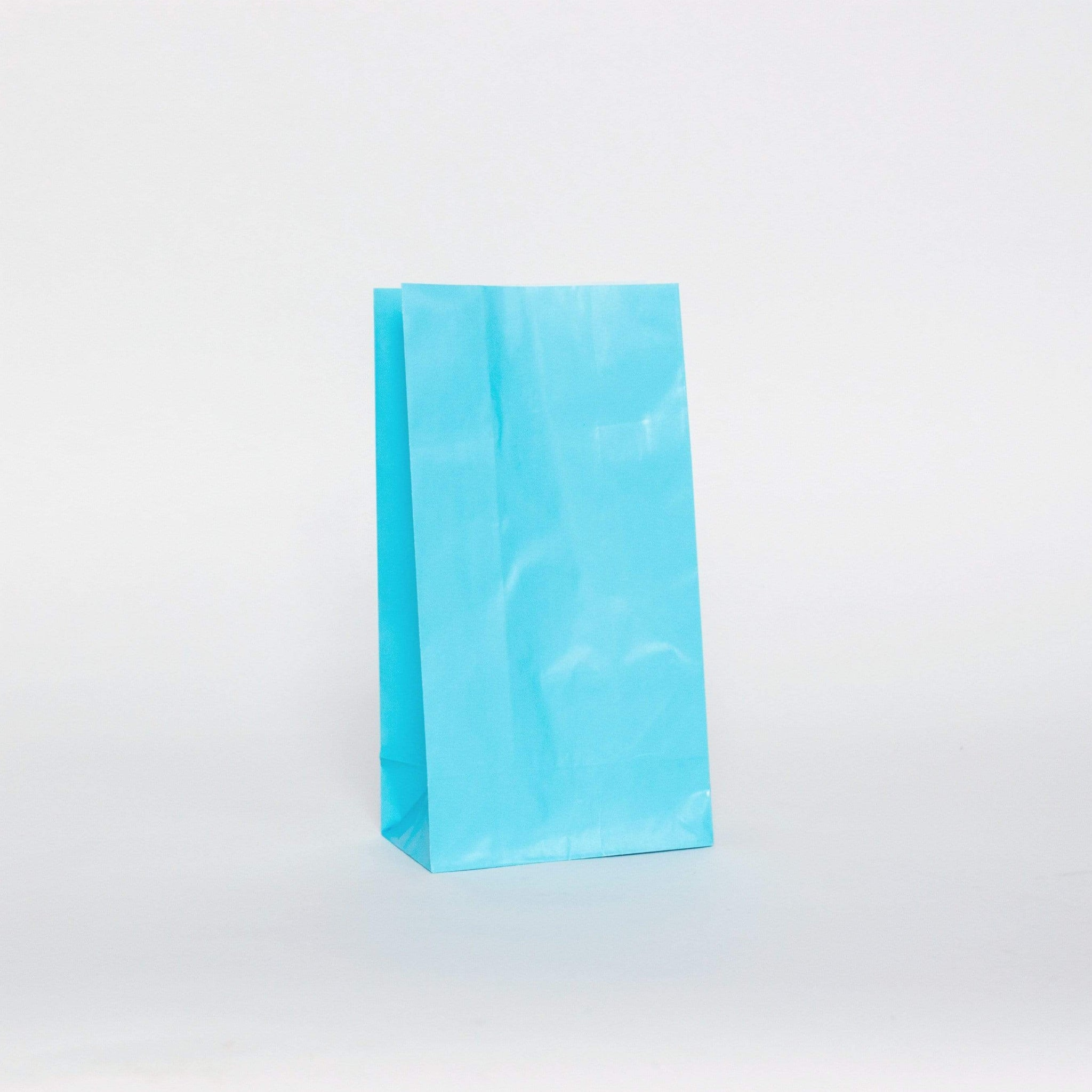 Light Blue Party Bags