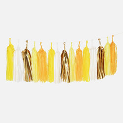 Tassel Garland Kit - Sunshine (4m 20 Tassels)