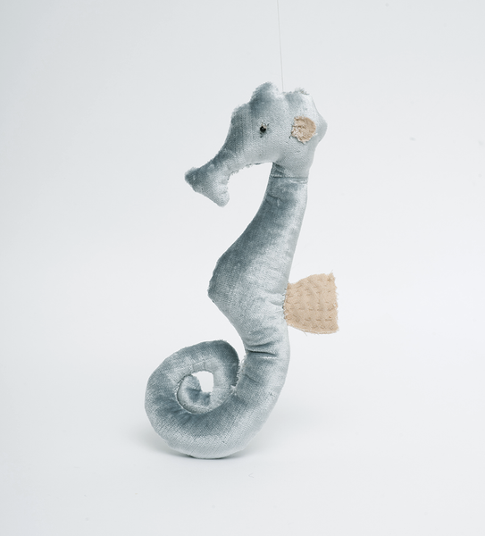 Sea horse - Misty Blue Velvet