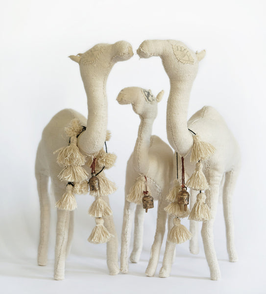 White Camels Family of 3