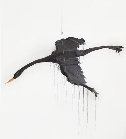 Flying black Bird