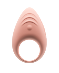 Lovely 2.0 App-Controlled Vibrating Couples Cock Ring
