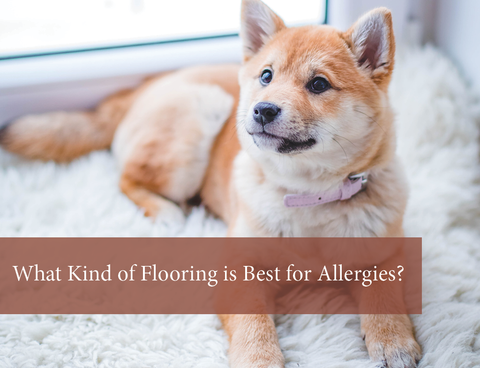 Best (& Worst) Flooring for Allergies & Asthma