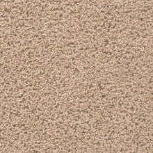 DreamWeaver Carpet - Broadcast PLUS - Flax Beige - 2