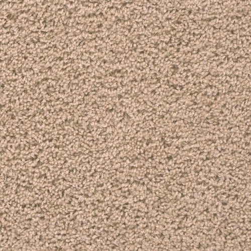 broadcast-plus-flax-beige