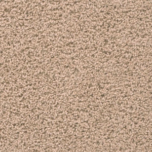 DreamWeaver Carpet - Broadcast PLUS - Flax Beige
