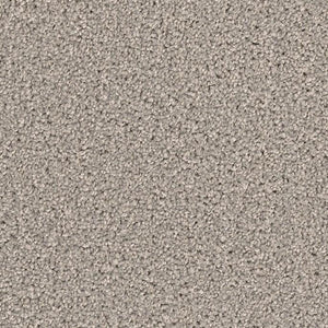 DreamWeaver Carpet - Broadcast PLUS - Silver Birch
