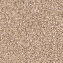 DreamWeaver Carpet - Broadcast PLUS - Sawgrass - 2
