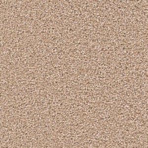 DreamWeaver Carpet - Broadcast PLUS - Sawgrass