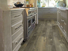 Shaw Vinyl - Blue Ridge Pine 720C Plus HD - Pitch Pine - 9x59 - 6