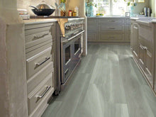 Shaw Vinyl - Cathedral Oak 720C Plus HD - Misty Oak - 9x59 - 6