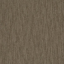 Philadelphia Queen Carpet - Dynamo - Scholarly - 24x24 - 2