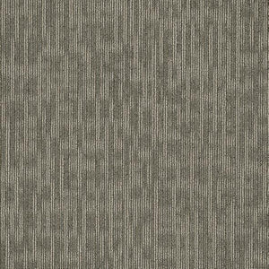 Philadelphia Queen Carpet - Genius - Masterful - 24x24