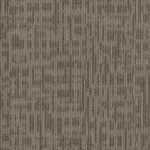 Philadelphia Queen Carpet - Genius - Scholarly - 24x24