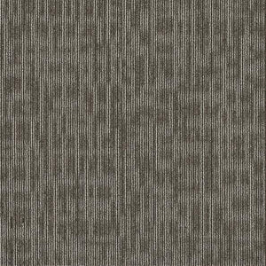 Philadelphia Queen Carpet - Genius - Smarts - 24x24