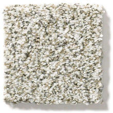 Shaw Carpet - All Set I - Quartz - 3