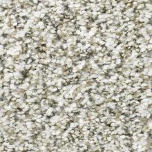 Shaw Carpet - All Set I - Quartz - 2