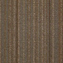 Philadelphia Queen Carpet - Wired - Energize - 24x24 - 2