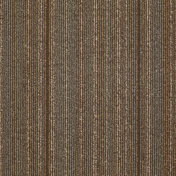 Philadelphia Queen Carpet - Wired - Energize - 24x24