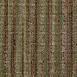 Philadelphia Queen Carpet - Wired - Juice - 24x24