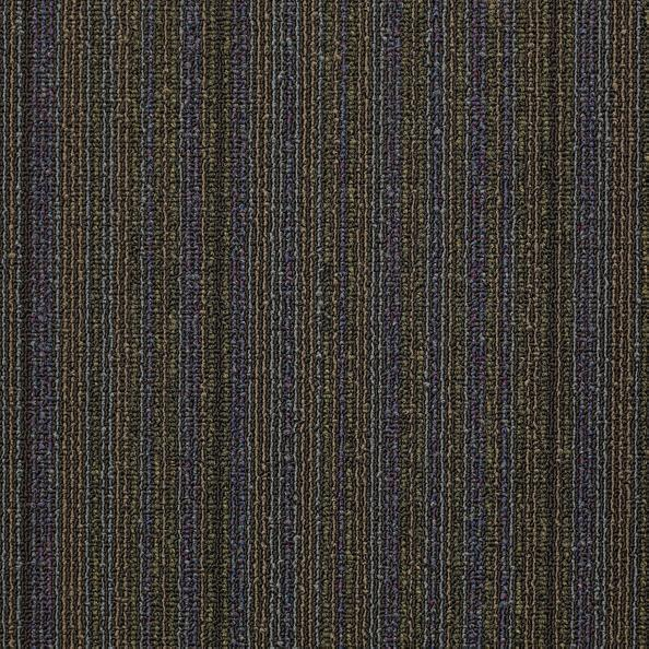 Philadelphia Queen Carpet - Wired - Magnetize - 24x24