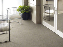 Shaw Carpet - All Over It - Misty Harbor - 9