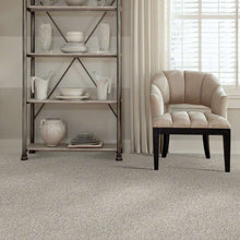 Shaw Carpet - All Set I - Quartz - 4