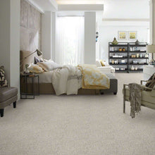 Shaw Carpet - All Set I - Quartz - 5