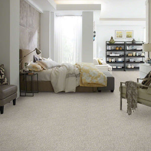 Shaw Carpet - All Set I - Quartz
