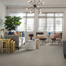 Shaw Carpet - All Set I - Quartz - 6