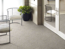 Shaw Carpet - All Set I - Quartz - 9