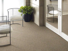 Shaw Carpet - Nature Essence XY195 - Colonial Cream - 7