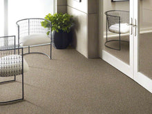 Shaw Carpet - Nature Essence XY195 - Moonlit Sand - 5
