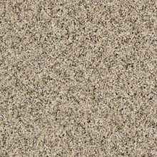 Shaw Carpet - Nature Essence XY195 - Colonial Cream - 2