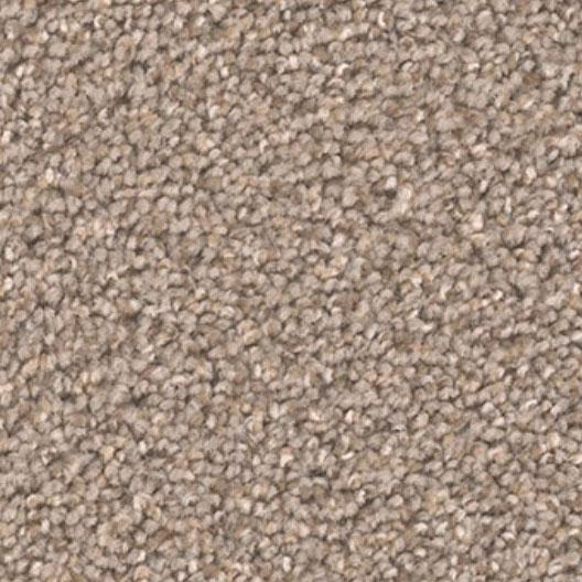 DreamWeaver Carpet - Broadcast PLUS - Cinder