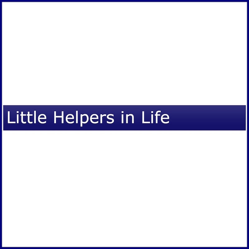 Little Helpers in Life