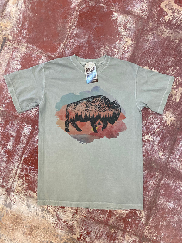 1746 Watercolor Mountain Buffalo Tee