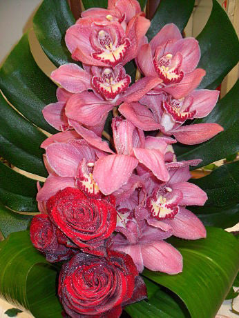 Beautiful Pink Orchids Corporate